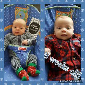 piccolage 8 weken oud