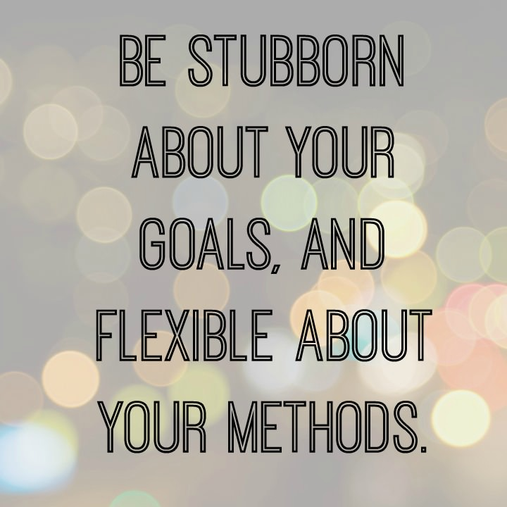 17-5-july-15-stubborn-goals-and-flexible-methods