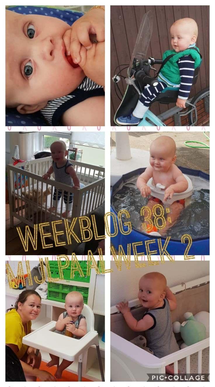 weekblog 38 mijlpaalweek 2 fotocollage