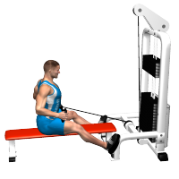 pully trazybar pulldown