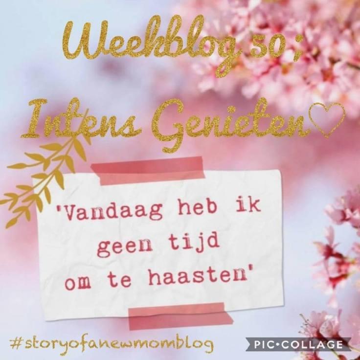 topicpic weekblog 50